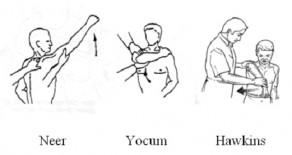 Neer-Yocum-Hawkins