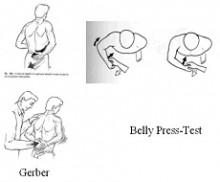 Gerber - Press Belly